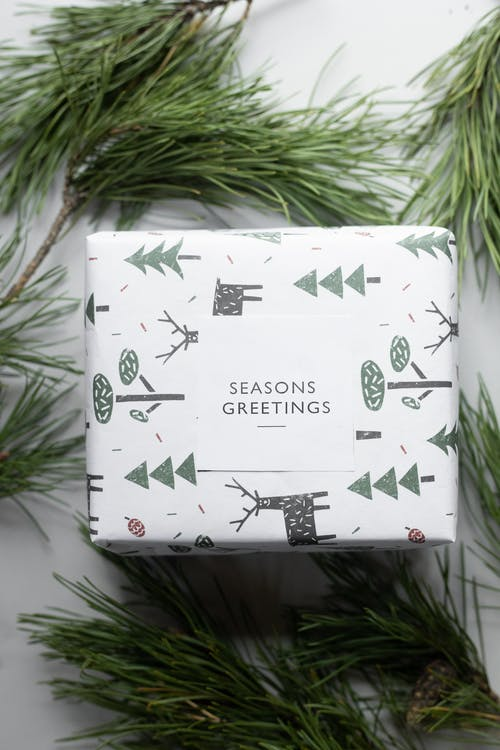 Present box wrapped in paper with Christmas symbols among coniferous twigs