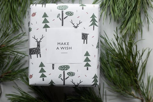 Wrapped New Year present box placed among coniferous branches