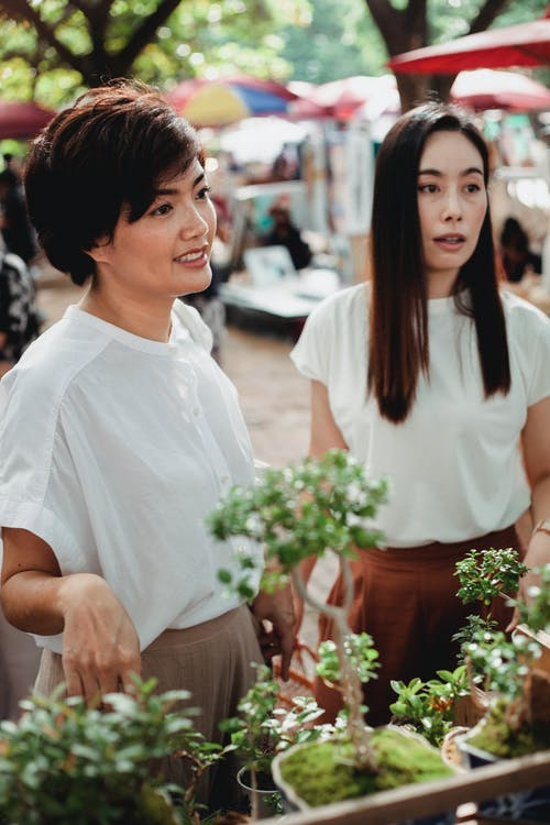 Charming young Asian females wearing stylish summer outfits choosing green young houseplants presented on stall in sunny street market