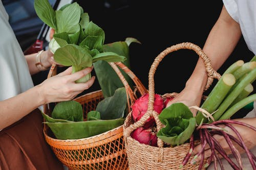 Crop girlfriends with baskets full of fresh herbs and vegetables