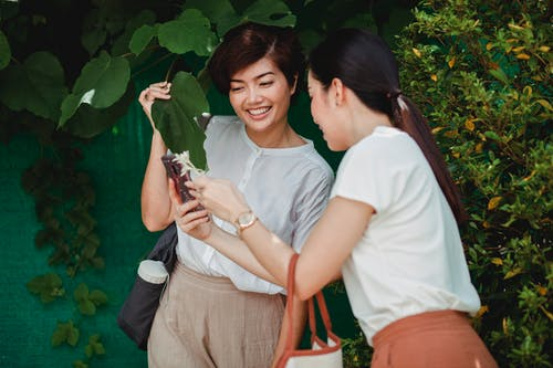 Unrecognizable female sharing cellphone with young happy ethnic partner near greenery trees in summer