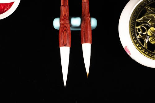 Top view of bright calligraphy brush pens with soft tips and bamboo shafts near decorative plant