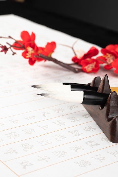Calligraphy brushes on holder near bright flower