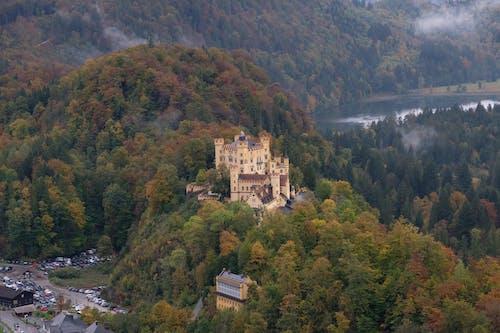 下落, 原本, 城堡 的 免费素材图片