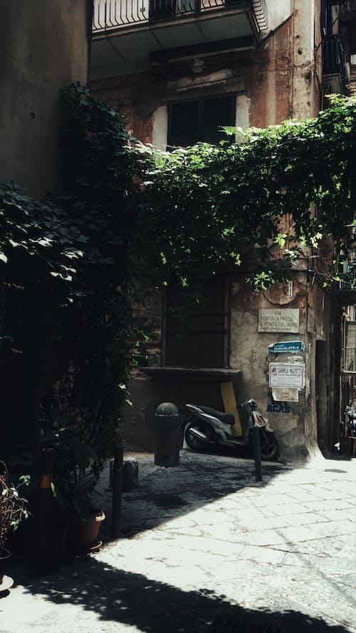Бесплатное стоковое фото с Аллея, архитектура, бедствие, военный