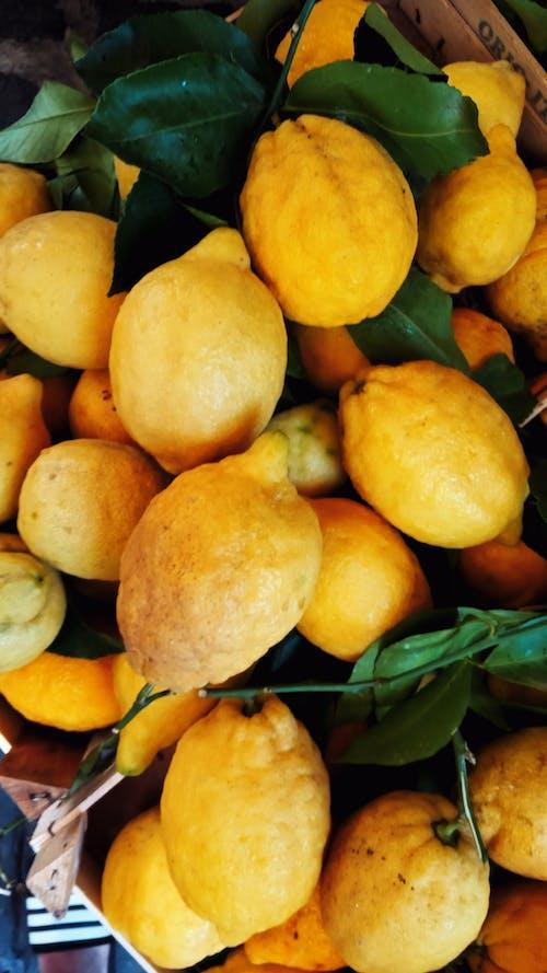 Бесплатное стоковое фото с витамин, вкусный, выращивать, готовка