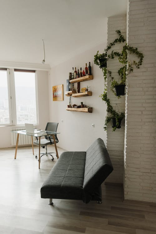 Black and Gray Padded Chair Beside Green Indoor Plant