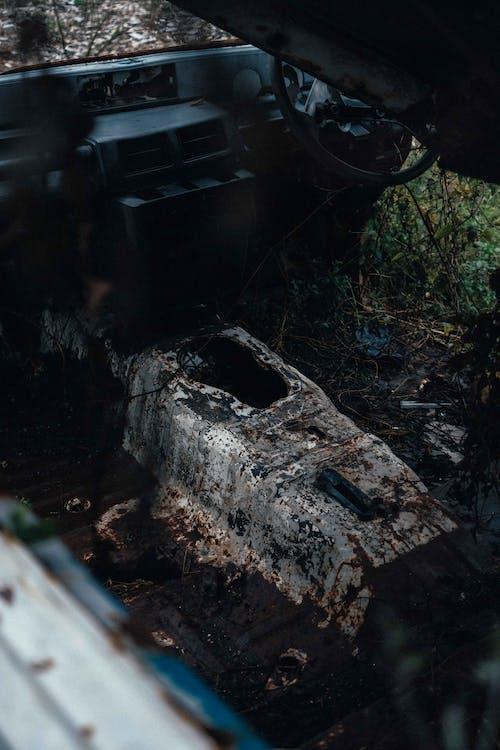 Free stock photo of broken, car, leaf, soil