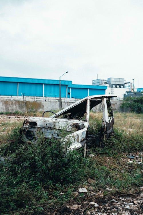 Free stock photo of broken, car, destroyed, leaf