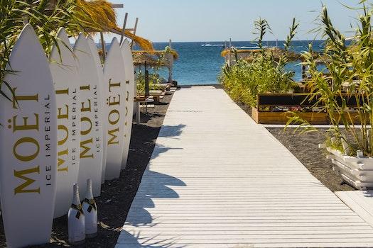 Free stock photo of wood, sea, nature, beach