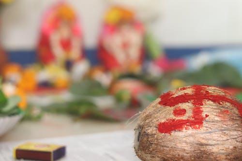 Free stock photo of coconut, Swastik