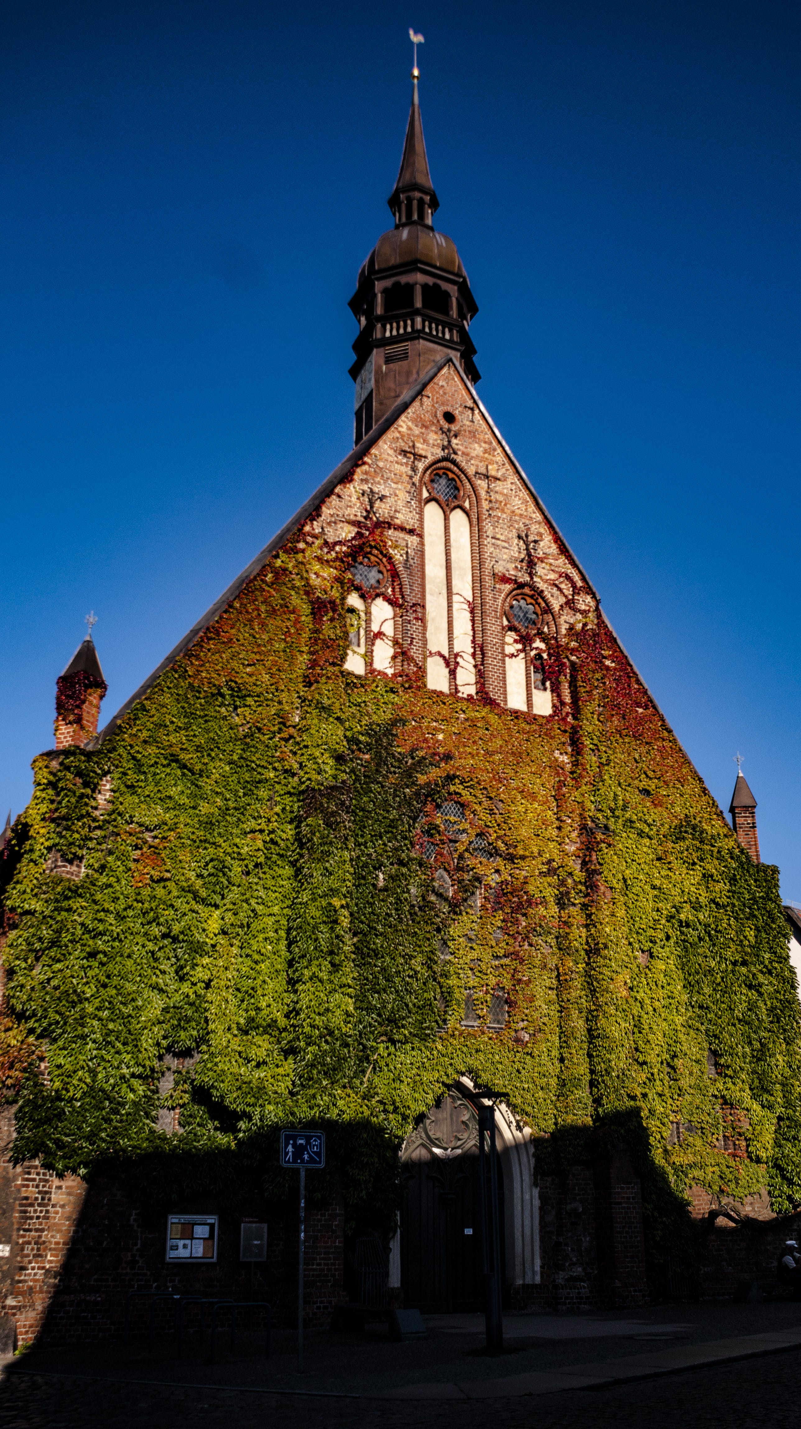 Free stock photo of church, ivy, old