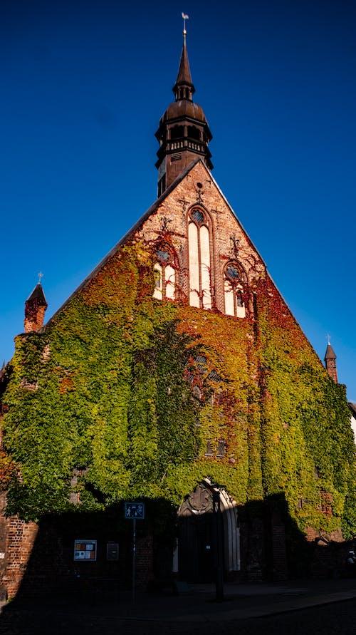 Ilmainen kuvapankkikuva tunnisteilla kirkko, muratti