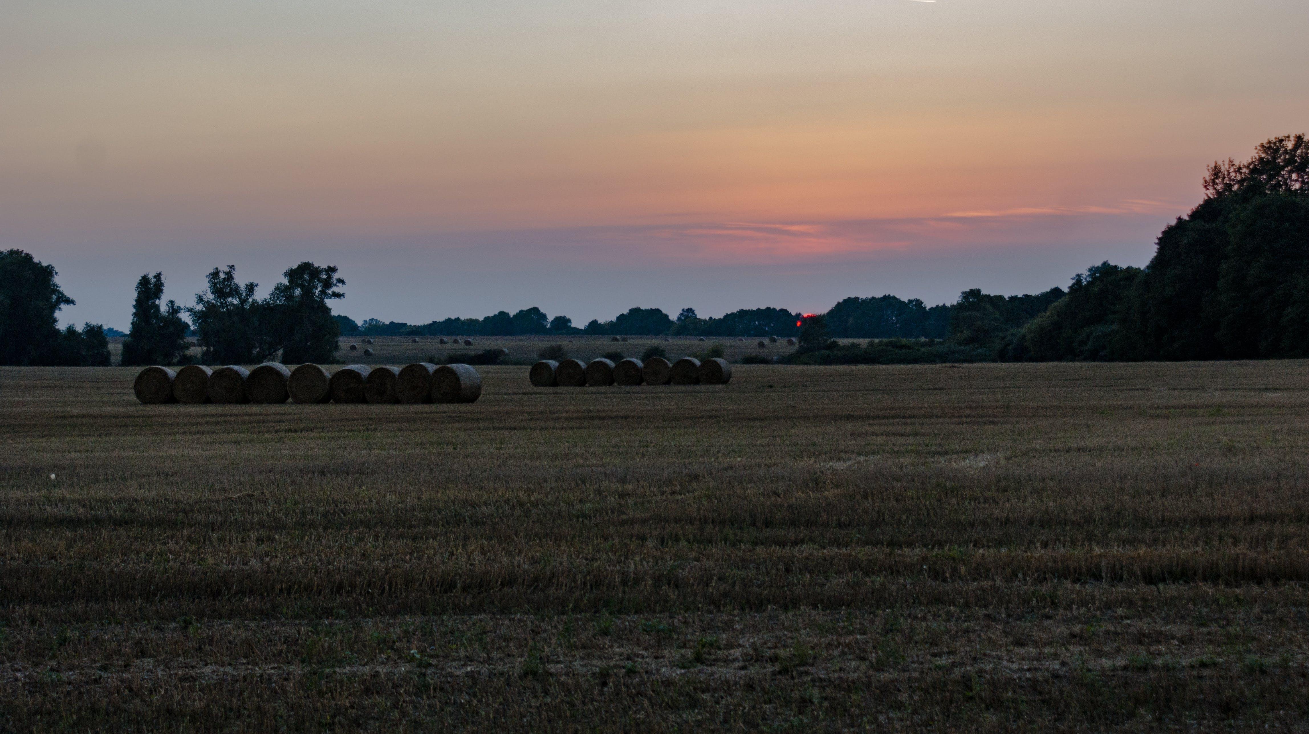 Free stock photo of hay bales, landscape, sunset