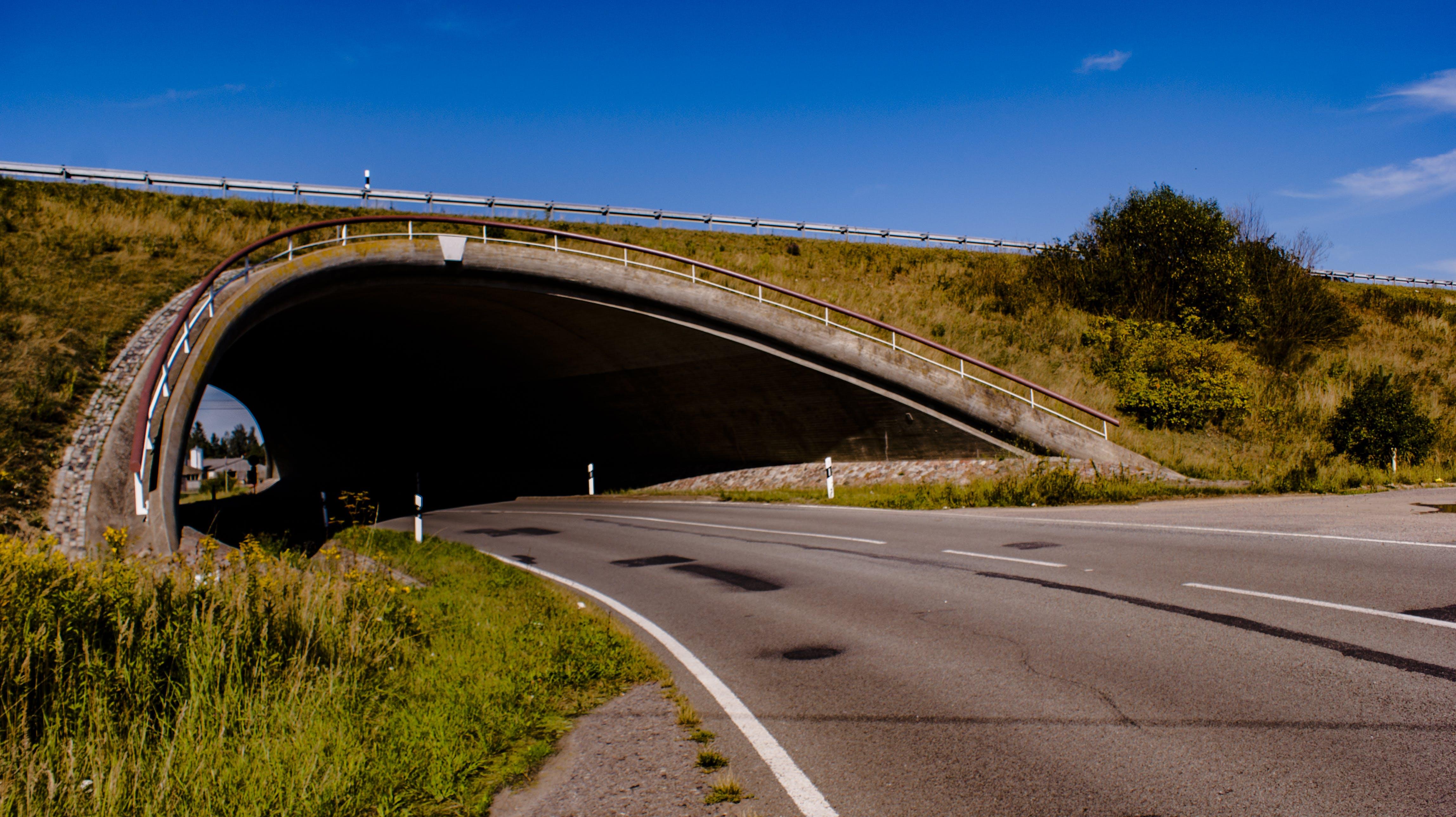 Free stock photo of empty street, landscape, tunnel