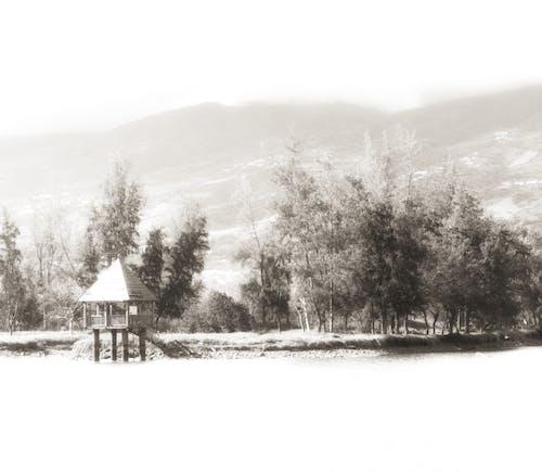 Free stock photo of beatiful landscape, black and gold background, blue lake