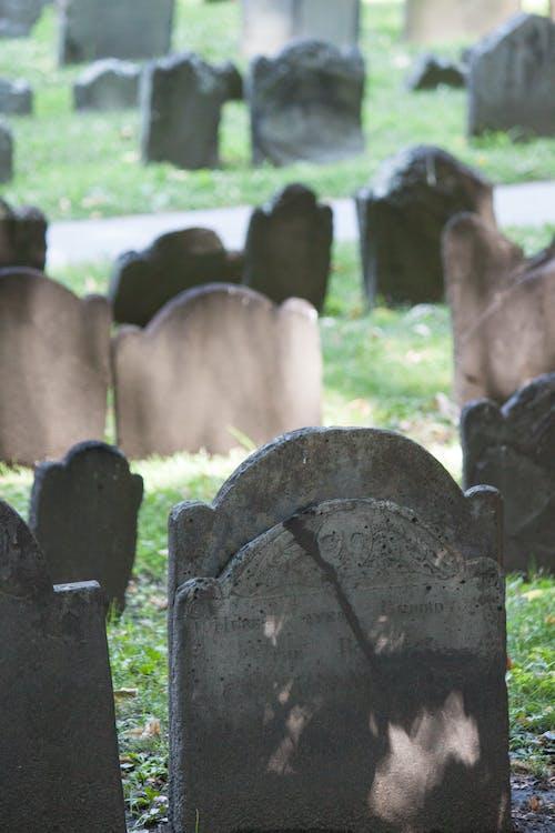Free stock photo of boston, cemetery, ghost