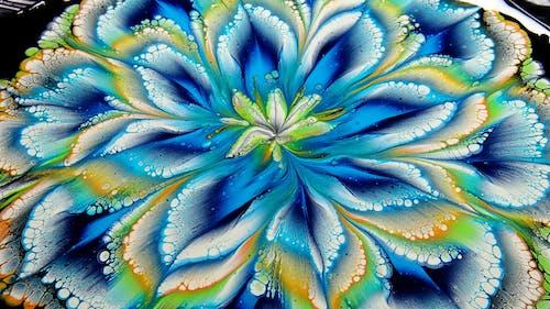 คลังภาพถ่ายฟรี ของ กลีบดอกไม้, กำลังบาน, ความคิดสร้างสรรค์