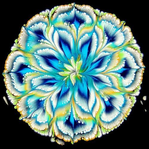 คลังภาพถ่ายฟรี ของ กลีบดอกไม้, การตกแต่ง, การทาสี