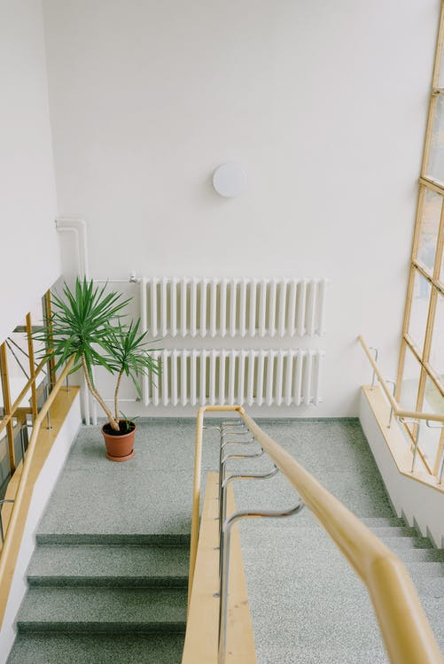 High angle of stairway with handles and potted plant and radiator on wall inside building