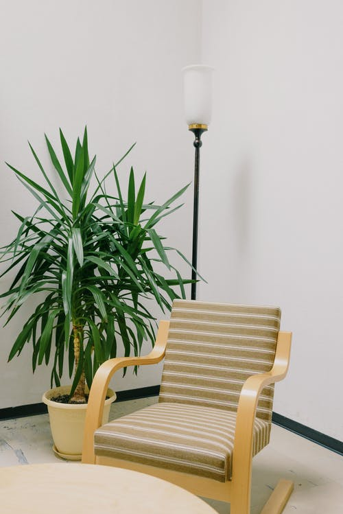 Comfortable armchair placed near green potted plant and stylish lamp near round table in flat