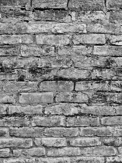 Foto d'estoc gratuïta de aparell d'un mur, brut, ciment