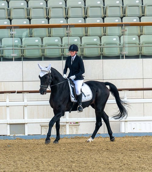 Young female jockey riding black horse in arena