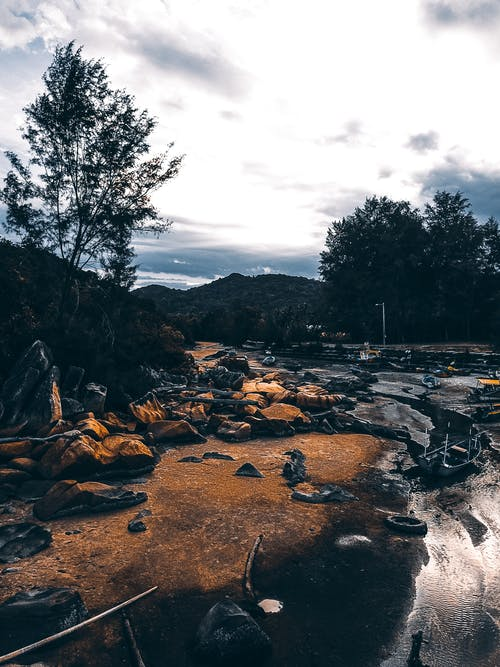 Picturesque embankment with rocks bushes and trees near high hills under cloudy sky