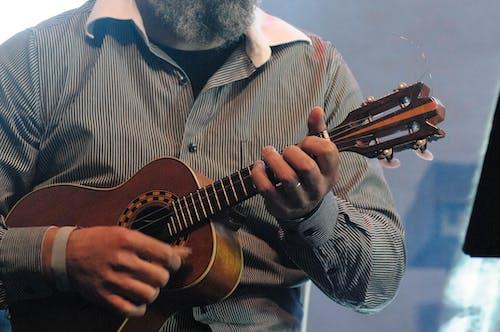 Crop man playing ukulele during concert