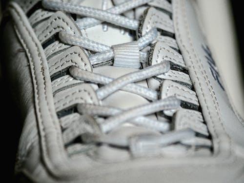คลังภาพถ่ายฟรี ของ fila, ผู้ฝึกสอน, รองเท้า, รองเท้าผ้าใบ