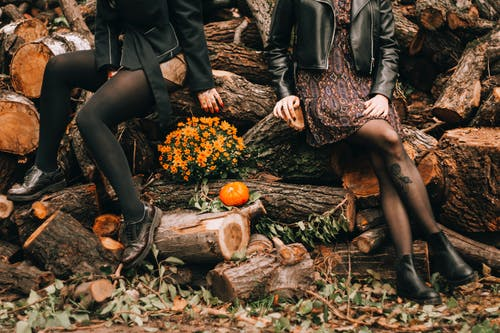 Woman in Black Leather Jacket Sitting on Brown Tree Log