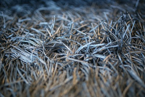 Gratis lagerfoto af frynser, tæppe