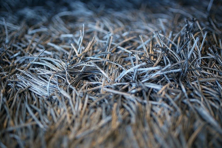 Carpet with fringe