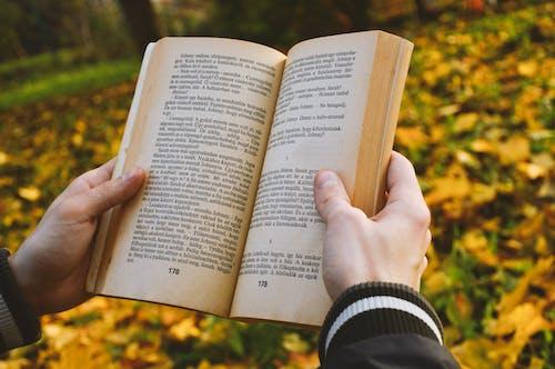 Ảnh lưu trữ miễn phí về con trai, cuốn tiểu thuyết, đọc hiểu, đọc sách