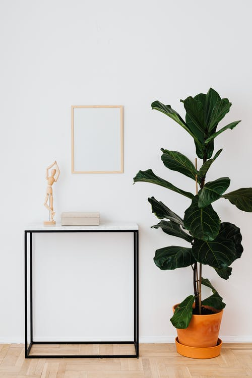 A Frame On White Wall With A Book and Decoration On Table Beside A Potted Plant