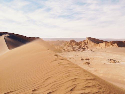 Sandy dunes in vast windy desert