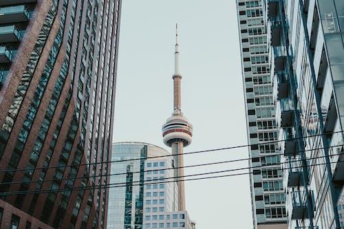 Kostenloses Stock Foto zu architektur, aufnahme von unten, cn turm