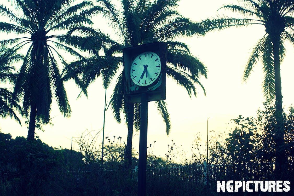 ngpictures, rdc, 非洲 的 免費圖庫相片