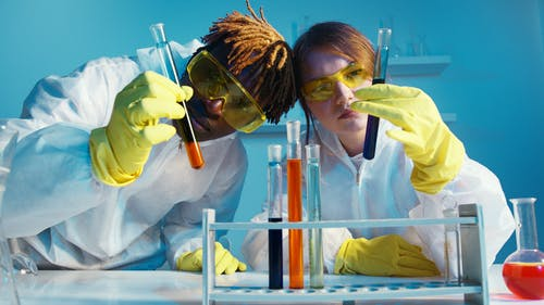 A Man and a Woman Holding a Test Tube