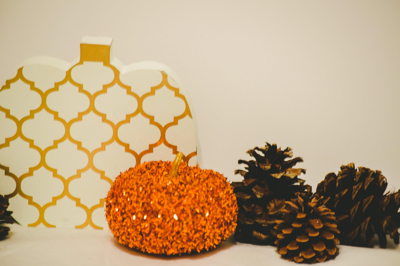 Free stock photo of autumn, fall, pumpkins, pinecones