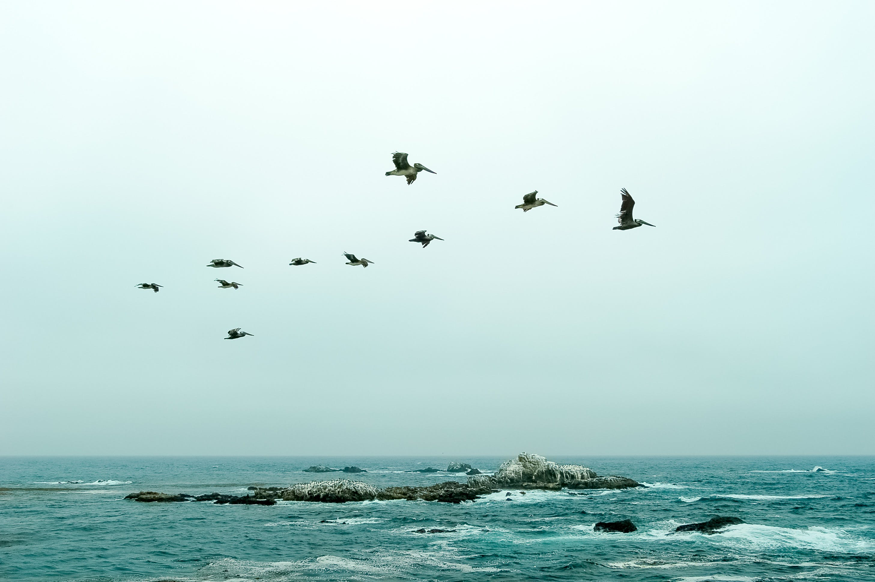 Free stock photo of formation, no people, no person, ocean