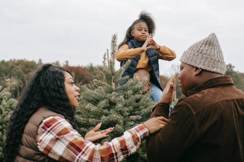 Black family discussing choice of Christmas tree