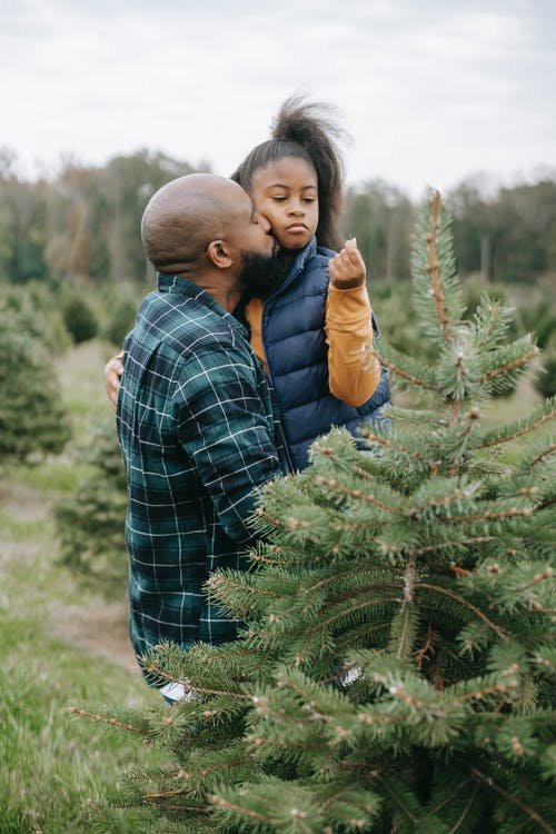 Black father carrying daughter while standing between fir trees