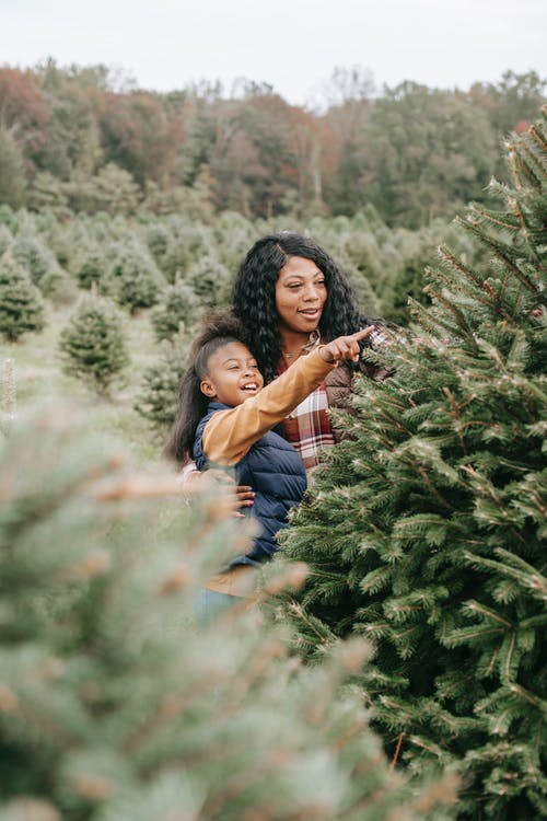Cheerful black girl pointing at fir tree standing with mum