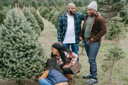 Positive African American dad standing with teen son while females sawing spruce for family Christmas celebration
