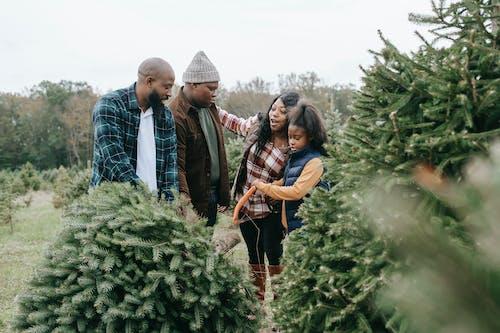 Black family sawing green lush fir tree
