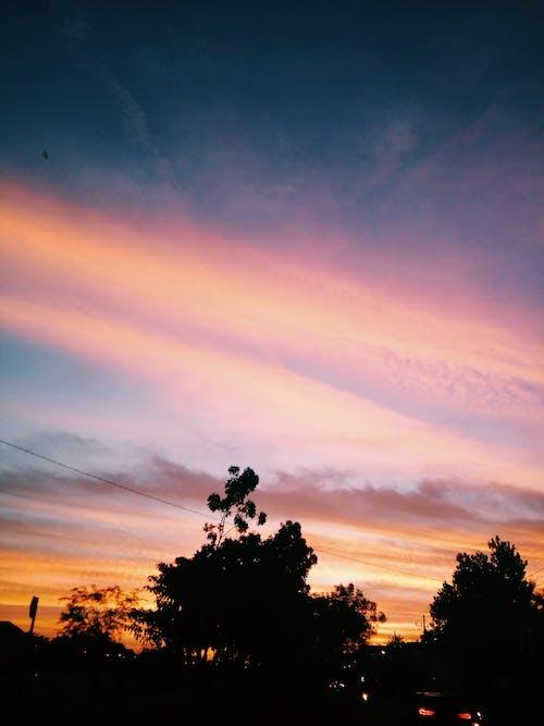 Free stock photo of #sunset #color #landscape #photo #tree #beautiful