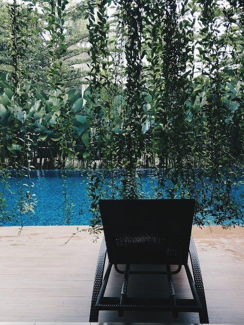 Fotos de stock gratuitas de agua, agua Azul, al aire libre, de madera
