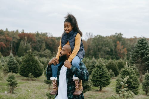 Black father carrying daughter on shoulders in tree farm