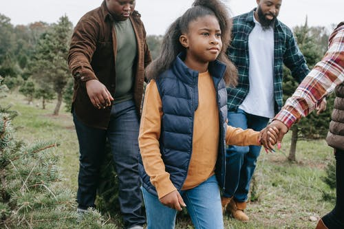 Crop black African American family walking together with Christmas tree on green cultivation farm